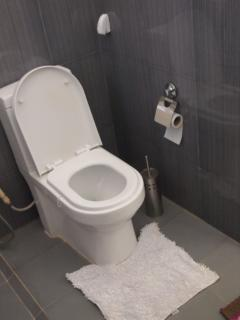 New toilet in both the bathrooms