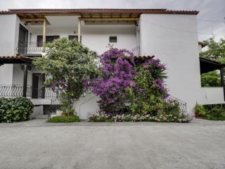 Apartment in Polichrono, Kassandra, ID: 3558