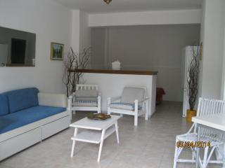 Apartment in Kriopigi, Kassandra, ID: 2295