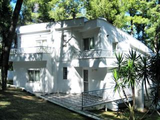 Villa in Sani, Kassandra, ID: 419