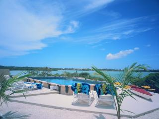 Turtle Oasis Cottage, Providenciales