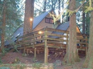 #86 Rustic Pet-Friendly Cabin near Mt. Baker!, Glacier