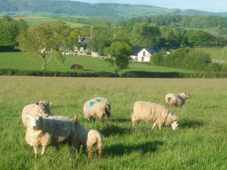 Farm holiday Cottage Devon Somerset sleeps 4, Brompton Ralph