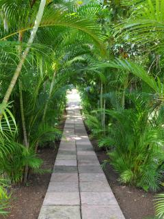 Walkway to Pool House and Pool