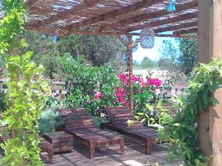 organic living, Port de Sant Miguel