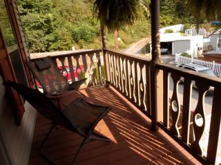 Walk to downtown. Large deck and private parking!