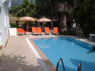 3 bedroom detached villa with its own private pool, Ovacik