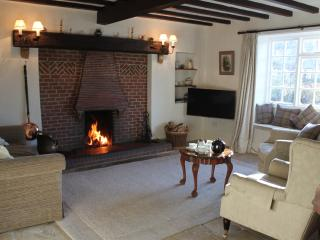 Sitting room with open fire. Initial basket of logs provided