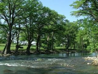 Shady River Oasis - 2br/2bth on the Guadalupe River!! Pet-Friendly Pad!
