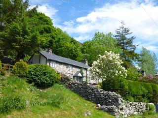 HAULFRYN, pet-friendly cottage with en-suite, woodburners, mountain views, Llang