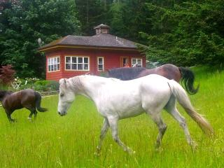 The Rose Cottage on Orcas Horse Farm