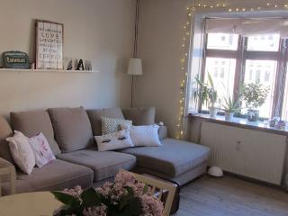 Cosy Copenhagen apartment at Amager