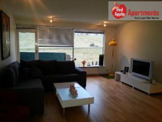 Bright and Beautiful Apartment in a Good Neighborhood - 6121, Reikiavik