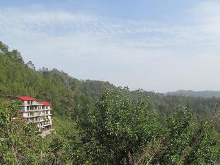 Whispering Pines Home Stay,Dharampur,Teh Kasauli