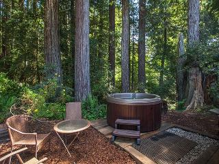Soak in the hot tub surrounded by Evergreens & ferns and listen to the creek!