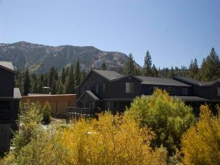 #549 Golden Creek, Mammoth Lakes