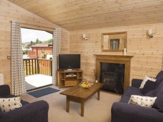 Deluxe Lodge with Hot Tub in Scotland sleeps 6, Blairgowrie
