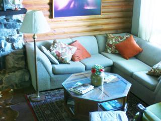 comfortable seating area on ground floor overlooks lake
