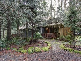 Rustic and cozy creekside home w/ private hot tub, close to ski areas!