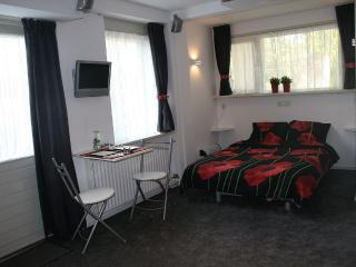 Garden Room In B&B Near Amsterdam, Purmerend