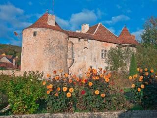 Gîte : Château Médiéval les Hirondelles de Gurgy, Recey-sur-Ource