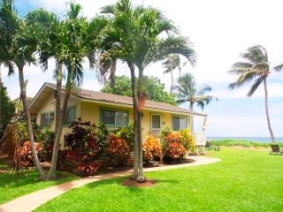 Palm Cottage, Paia