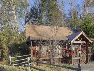 ER308 - THE COZY BEAR, Pigeon Forge