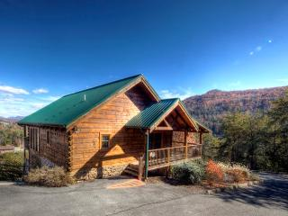 ERN856 - EAGLES POINT, Pigeon Forge