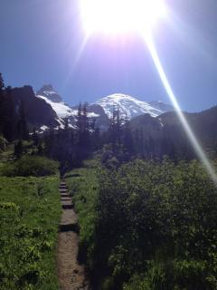 Summerland Trail, Mt Rainier