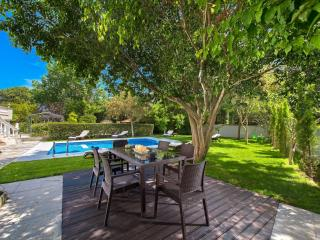 Pool area with dinning table under the tree