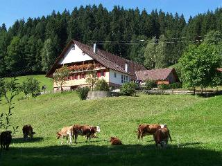 Vacation Apartment in Oberwolfach (# 8280) ~ RA64605