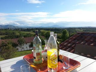 Gîte T3 pays basque vue montagnes et piscine