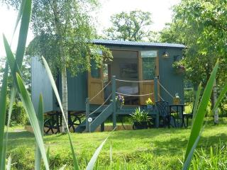 Lake Farm Shepherds Hut, Self Catering