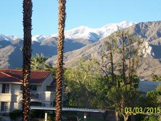 Just Remodeled Turnkey Furnished Luxurious Condo, Palm Springs