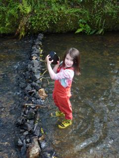 Another fun activity is dam building in the stream. Requires supervision, normally by Dads!