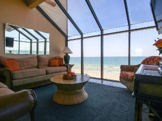 Dog-friendly oceanfront condo w/ beach views & access - snowbirds welcome!