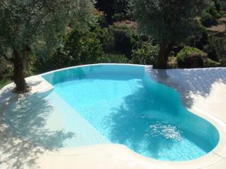 The infinity pool fully privative surrounded by olive trees