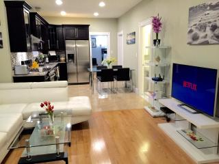 Cambridge /Boston Walkscore 94 Luxury 3 bed 2 bath