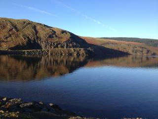 Fabulous circular walk from house including Llyn Brianne dam and ancient deciduous woodlands..