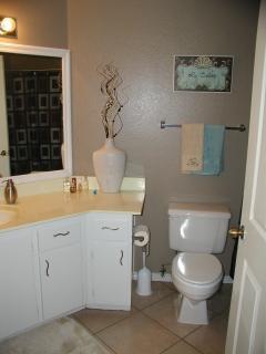 guest bathroom  second bathroom off master bedroom