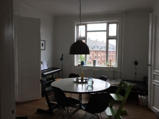 Well maintained Copenhagen apartment near central st