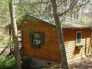 CREEKSONGS IS A LOG CABIN W/GUEST HOUSE & OUTDOOR F/P, HOT TUB, & WIFI!
