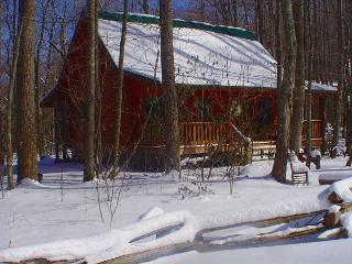 Creekside Cabin w/Hot Tub, WiFi, & Fire Pit! Decorated For Christmas!, Todd