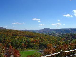 A HEAVENLY VIEW-Breathtaking Views W/Bubbling Hot Tub,  Gas F/P, Pets & WiFi!