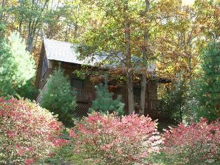 Cabin in Gated Community With WiFi, Fireplace & Fenced In Yard for Pets!, Fleetwood