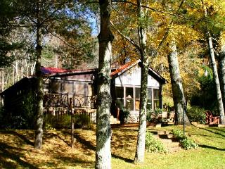 COZY RIVERSIDE LOG CABIN W/FIRE PIT, WIFI, KING BED,  FIREPLACE & LARGE DECK!