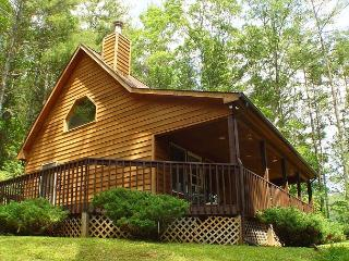 SPRUCE RIDGE-CABIN OVERLOOKING POND NEAR BOONE W/WIFI-AVAILABLE EASTER 2018!