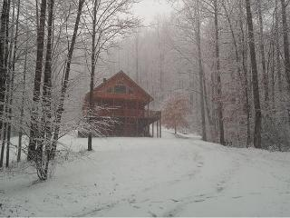 SECLUDED LOG HOME W/HOT TUB, FIRE PIT & WIFI!  BOOK YOUR WINTER GETAWAY!