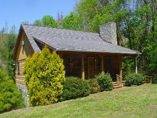 CHARMING LOG CABIN W/NEW RIVER ACCESS, HOT TUB, WIFI, FOOSBALL & PETS OK!