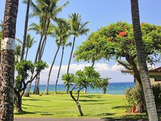 185-4 Wonderful 2 Bedroom, 3 Bath, Lahaina